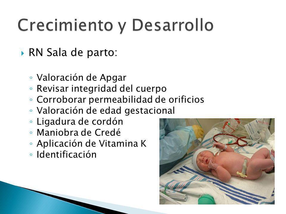 RN Sala de parto: Valoración de Apgar Revisar integridad del cuerpo Corroborar permeabilidad de orificios Valoración de edad gestacional Ligadura de c