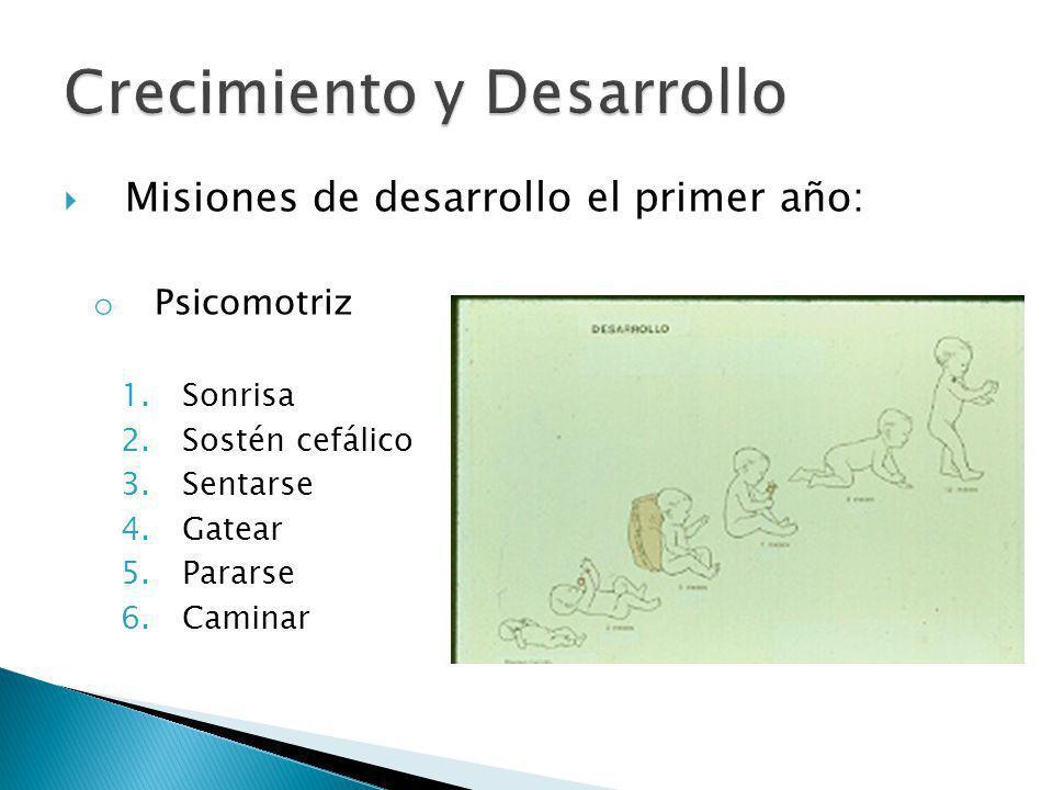 Misiones de desarrollo el primer año: o Psicomotriz 1.Sonrisa 2.Sostén cefálico 3.Sentarse 4.Gatear 5.Pararse 6.Caminar