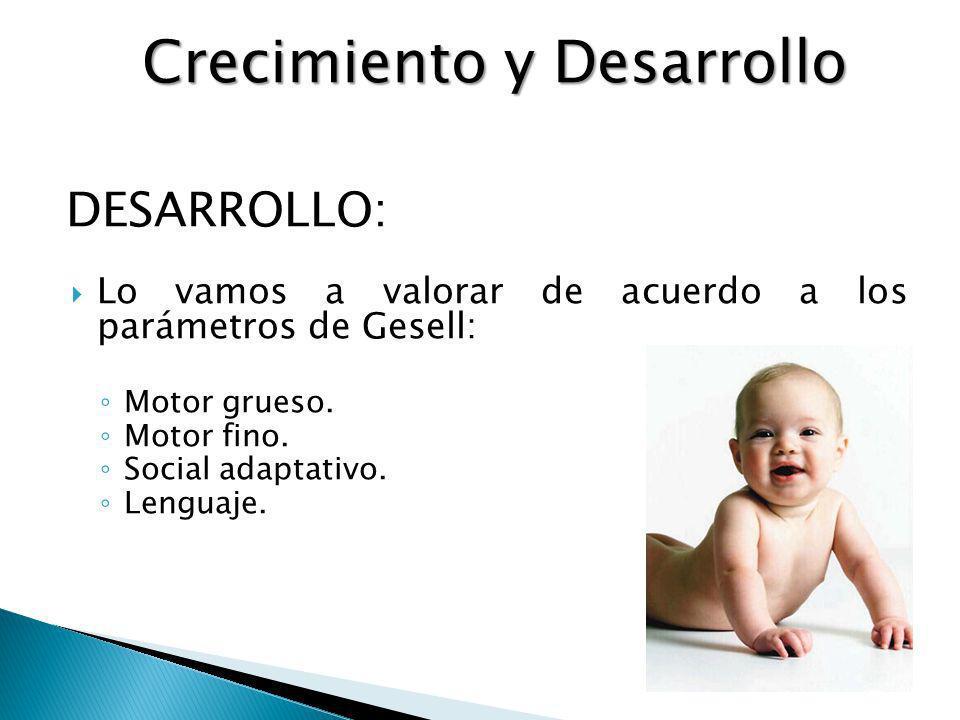 DESARROLLO: Lo vamos a valorar de acuerdo a los parámetros de Gesell: Motor grueso. Motor fino. Social adaptativo. Lenguaje. Crecimiento y Desarrollo