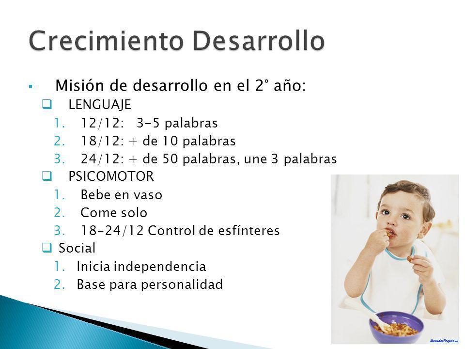 Misión de desarrollo en el 2° año: LENGUAJE 1.12/12: 3-5 palabras 2.18/12: + de 10 palabras 3.24/12: + de 50 palabras, une 3 palabras PSICOMOTOR 1.Beb