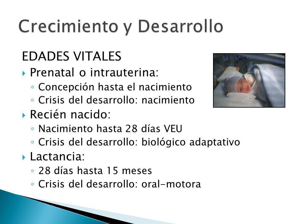 EDADES VITALES Prenatal o intrauterina: Concepción hasta el nacimiento Crisis del desarrollo: nacimiento Recién nacido: Nacimiento hasta 28 días VEU C