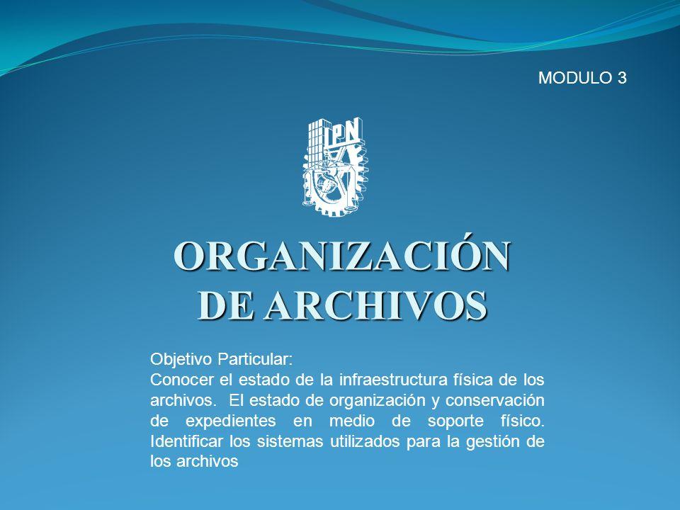 ORGANIZACIÓN DE ARCHIVOS MODULO 3 Objetivo Particular: Conocer el estado de la infraestructura física de los archivos. El estado de organización y con