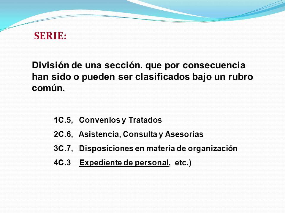 SERIE: División de una sección. que por consecuencia han sido o pueden ser clasificados bajo un rubro común. 1C.5, Convenios y Tratados 2C.6, Asistenc