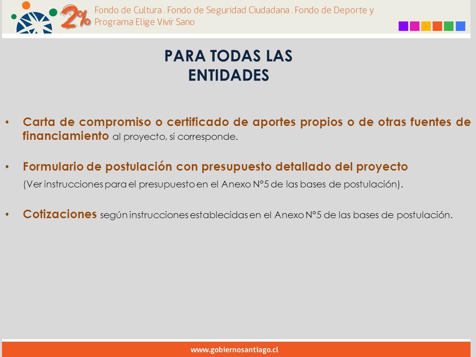 Carta de compromiso o certificado de aportes propios o de otras fuentes de financiamiento al proyecto, si corresponde.