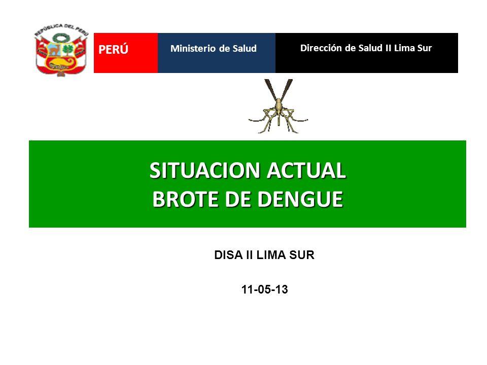 SITUACION ACTUAL BROTE DE DENGUE Dirección de Salud II Lima Sur Ministerio de Salud PERÚ DISA II LIMA SUR 11-05-13