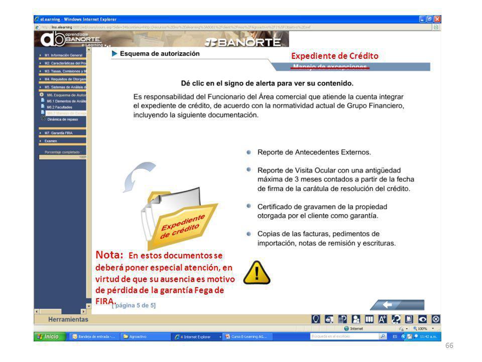 66 Expediente de Crédito Nota: En estos documentos se deberá poner especial atención, en virtud de que su ausencia es motivo de pérdida de la garantía Fega de FIRA.