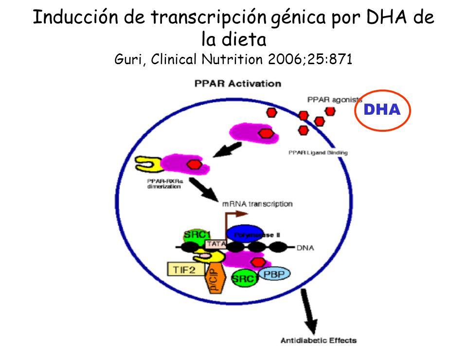 Inducción de transcripción génica por DHA de la dieta Guri, Clinical Nutrition 2006;25:871 DHA