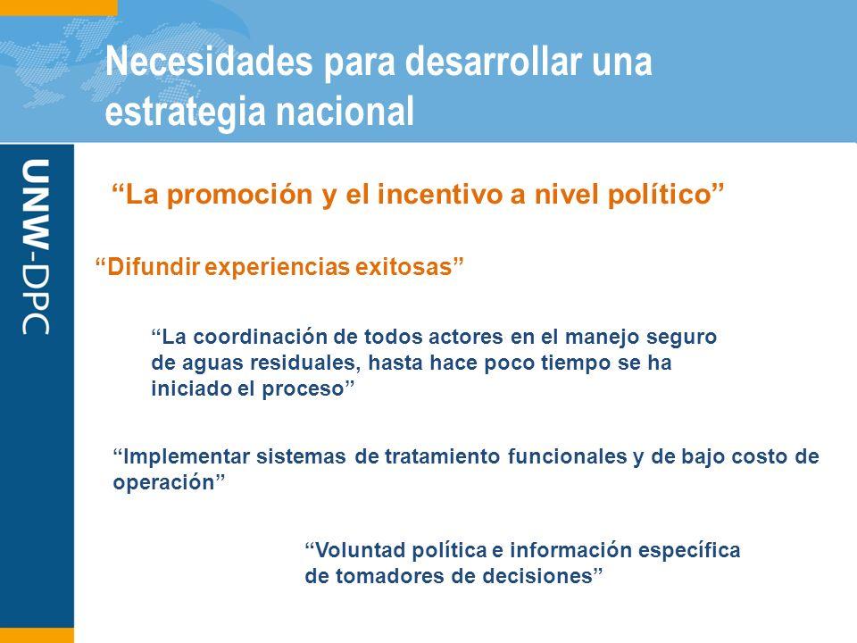 Necesidades para desarrollar una estrategia nacional La promoción y el incentivo a nivel político Difundir experiencias exitosas Implementar sistemas