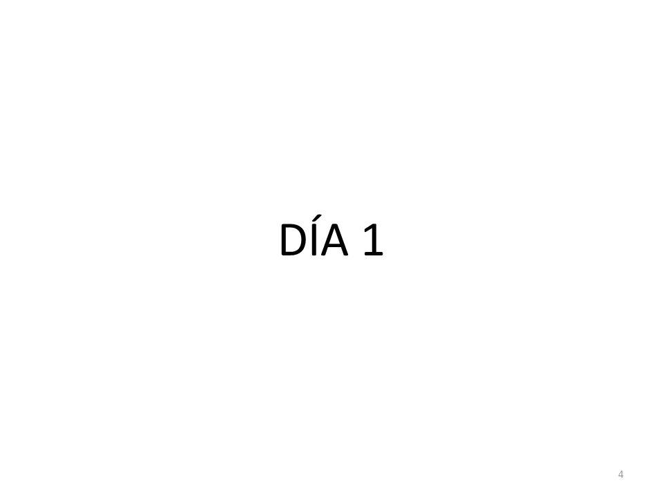 DÍA 1 4