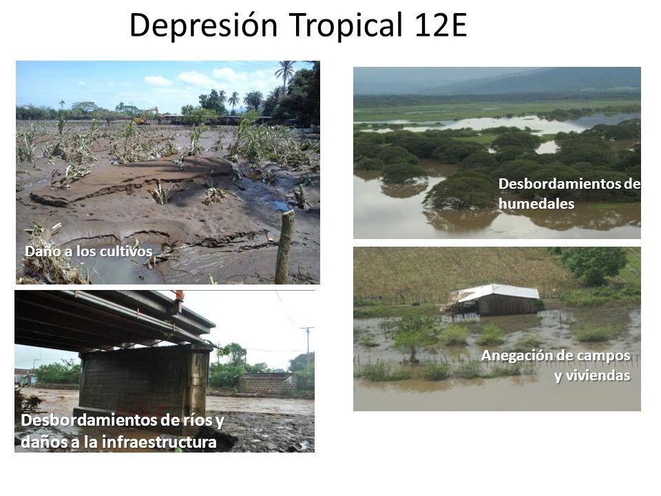 Saturación de suelos: susceptibilidad a deslizamientos Desbordamientos de ríos Anegación de campos y viviendas Desbordamientos de humedales Desbordami