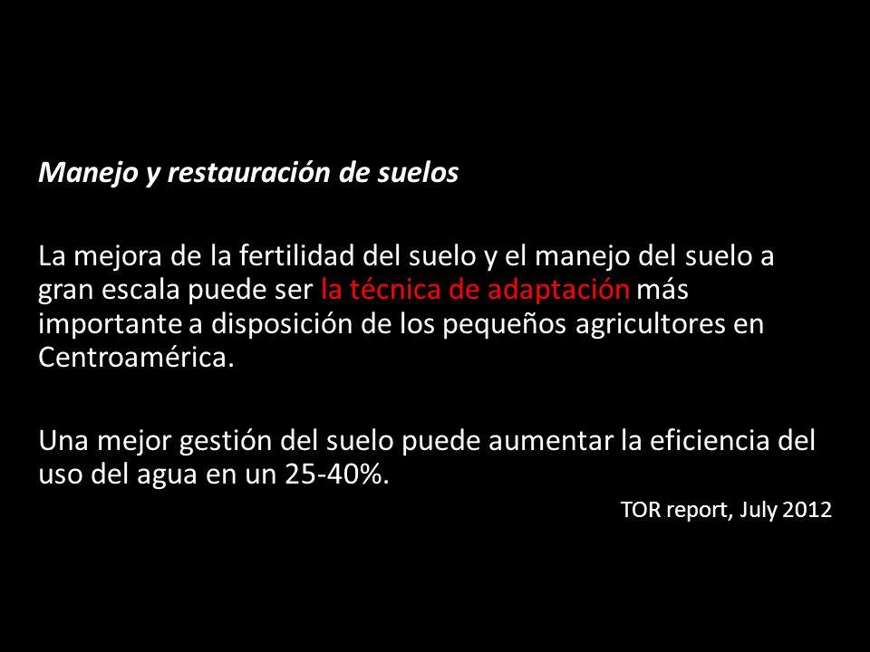 Manejo y restauración de suelos La mejora de la fertilidad del suelo y el manejo del suelo a gran escala puede ser la técnica de adaptación más import