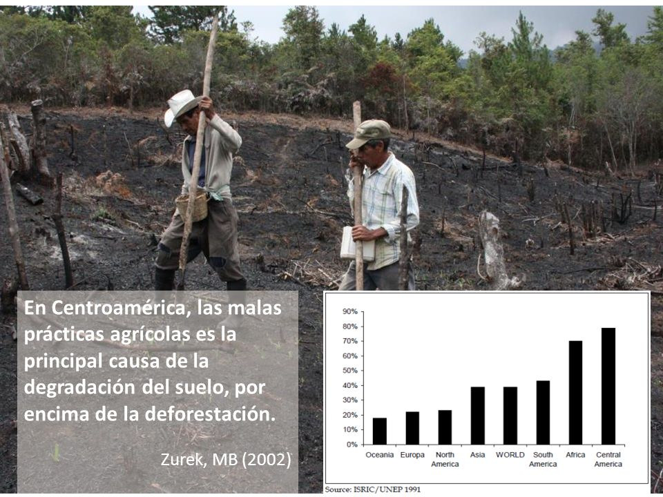 En Centroamérica, las malas prácticas agrícolas es la principal causa de la degradación del suelo, por encima de la deforestación. Zurek, MB (2002)
