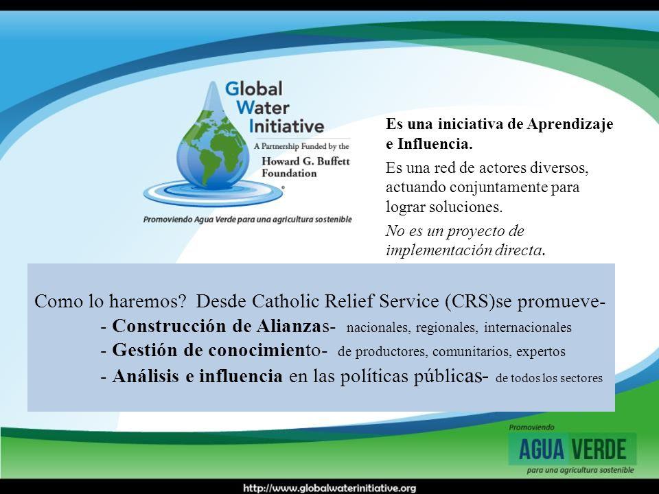 Como lo haremos? Desde Catholic Relief Service (CRS)se promueve- - Construcción de Alianzas- nacionales, regionales, internacionales - Gestión de cono