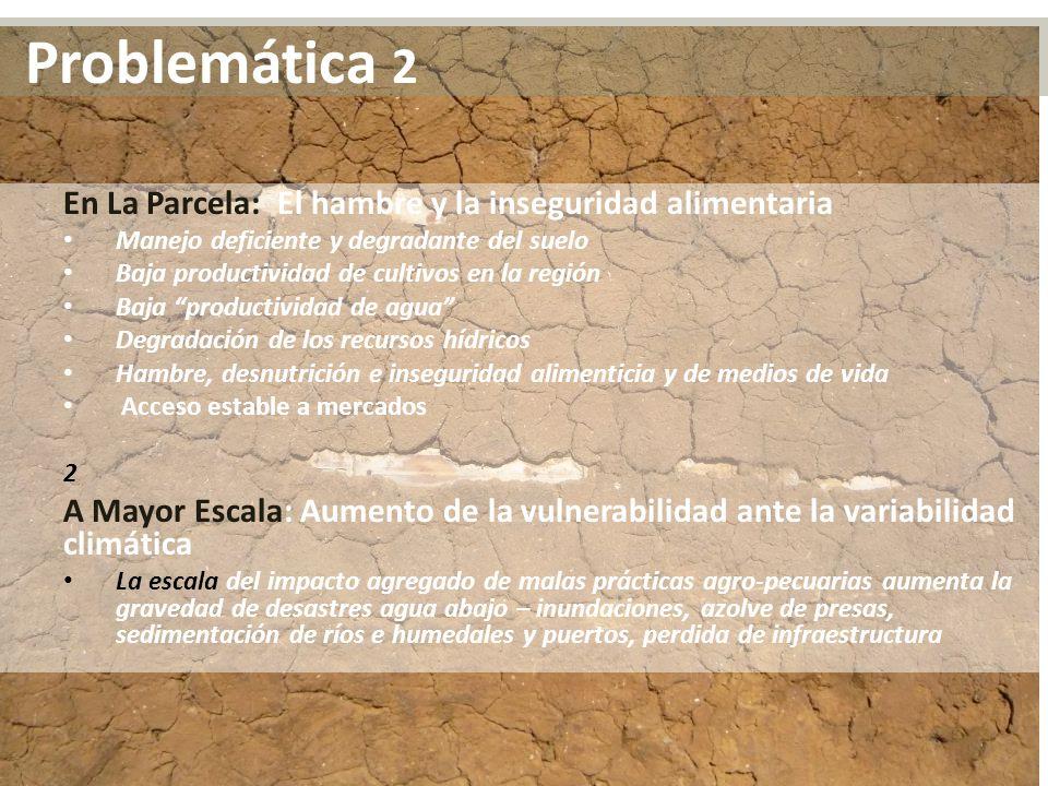 En La Parcela: El hambre y la inseguridad alimentaria Manejo deficiente y degradante del suelo Baja productividad de cultivos en la región Baja produc