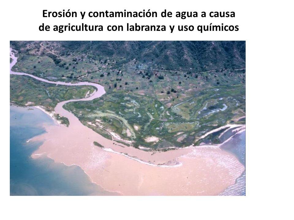 Saturación de suelos: susceptibilidad a deslizamientos Desbordamientos de ríos Anegación de campos y viviendas Desbordamientos de humedales Desbordamientos de ríos y daños a la infraestructura Daño a los cultivos Depresión Tropical 12E