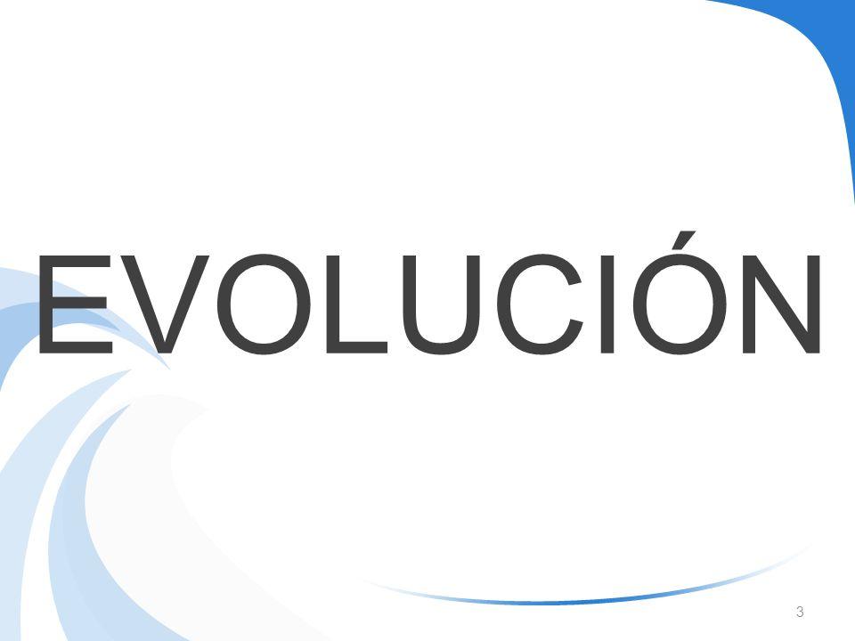 3 EVOLUCIÓN