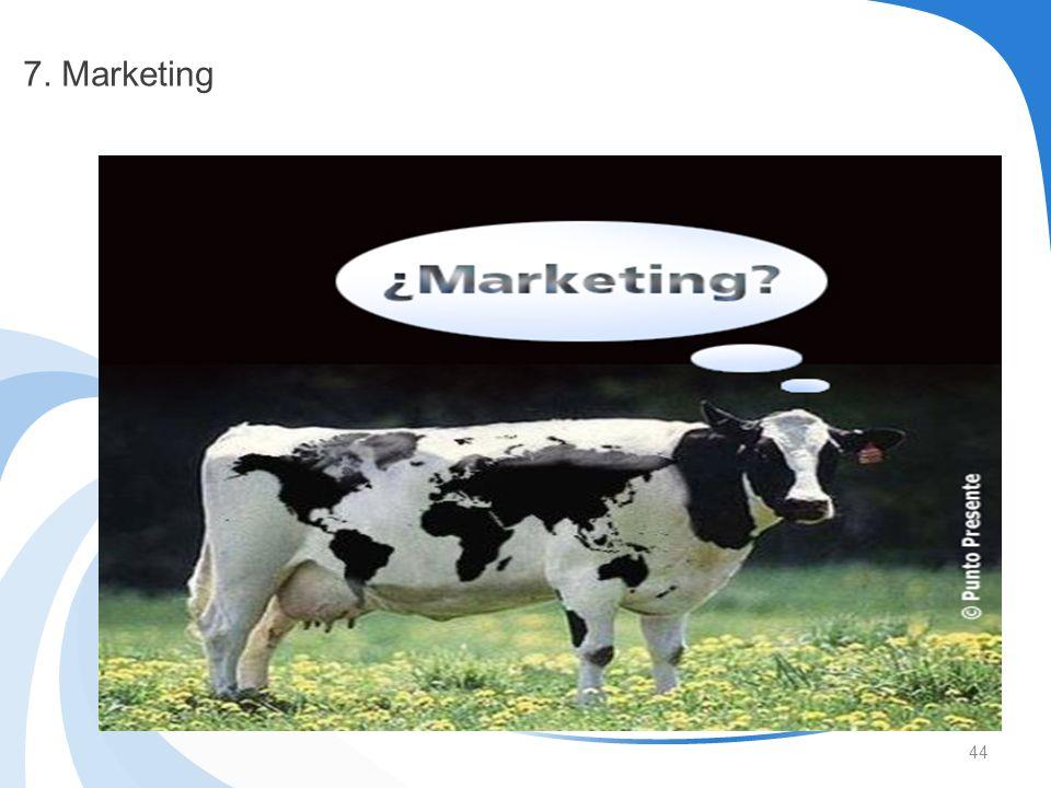 44 7. Marketing