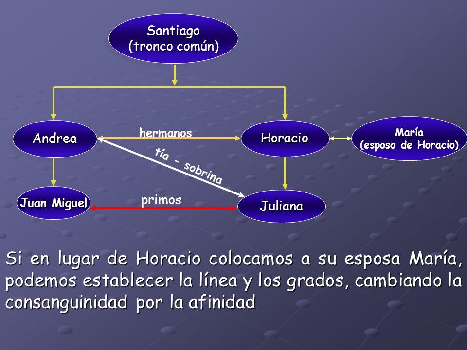 Santiago (tronco común) Santiago AndreaAndrea Horacio Juan Miguel hermanos tía - sobrina primos Juliana María (esposa de Horacio) Si en lugar de Horac