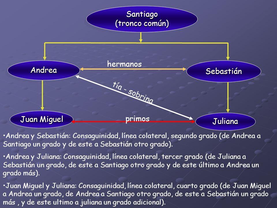 Santiago (tronco común) Santiago AndreaAndrea Sebastián Juan Miguel Juliana hermanos tía - sobrina primos Andrea y Sebastián: Consaguinidad, línea col