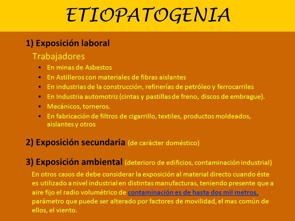 ETIOPATOGENIA 1) Exposición laboral Trabajadores En minas de Asbestos En Astilleros con materiales de fibras aislantes En industrias de la construcció