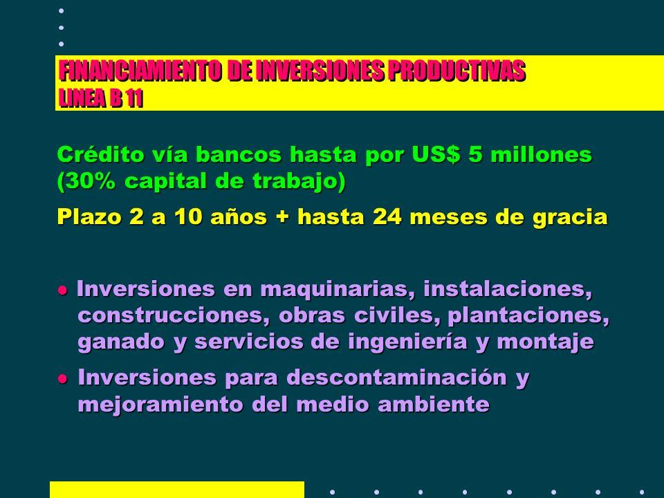 FINANCIAMIENTO DE INVERSIONES PRODUCTIVAS LINEA B 11 Crédito vía bancos hasta por US$ 5 millones (30% capital de trabajo) Plazo 2 a 10 años + hasta 24