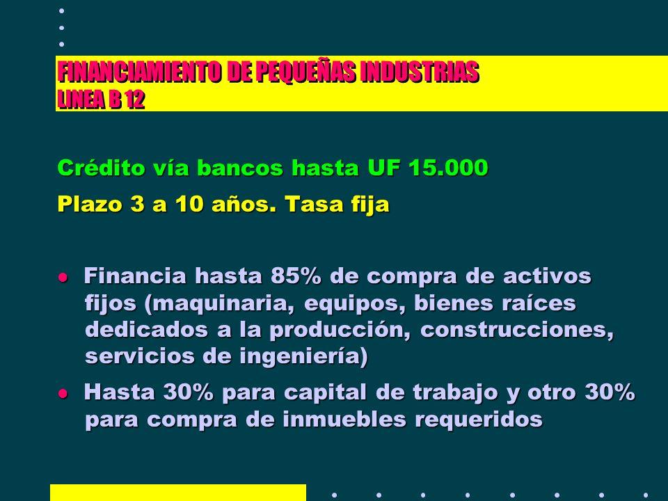 FINANCIAMIENTO DE PEQUEÑAS INDUSTRIAS LINEA B 12 Crédito vía bancos hasta UF 15.000 Plazo 3 a 10 años. Tasa fija l Financia hasta 85% de compra de act