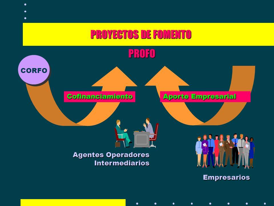PROYECTOS DE FOMENTO PROFO Empresarios Agentes Operadores Intermediarios CORFO Aporte Empresarial Cofinanciamiento