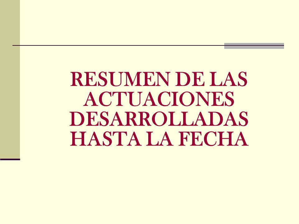 RESUMEN DE LAS ACTUACIONES DESARROLLADAS HASTA LA FECHA