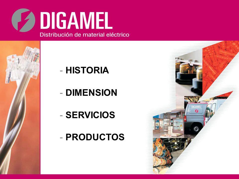Principales líneas de productos distribuidas por el Grupo DIGAMEL Conductores eléctricos Sistemas de cableado estructurado Sistemas de conducción eléctrica Automatismo y control industrial Pequeño material eléctrico Ventilación y climatización Envolventes metálicos y aislantes Máquinas eléctricas