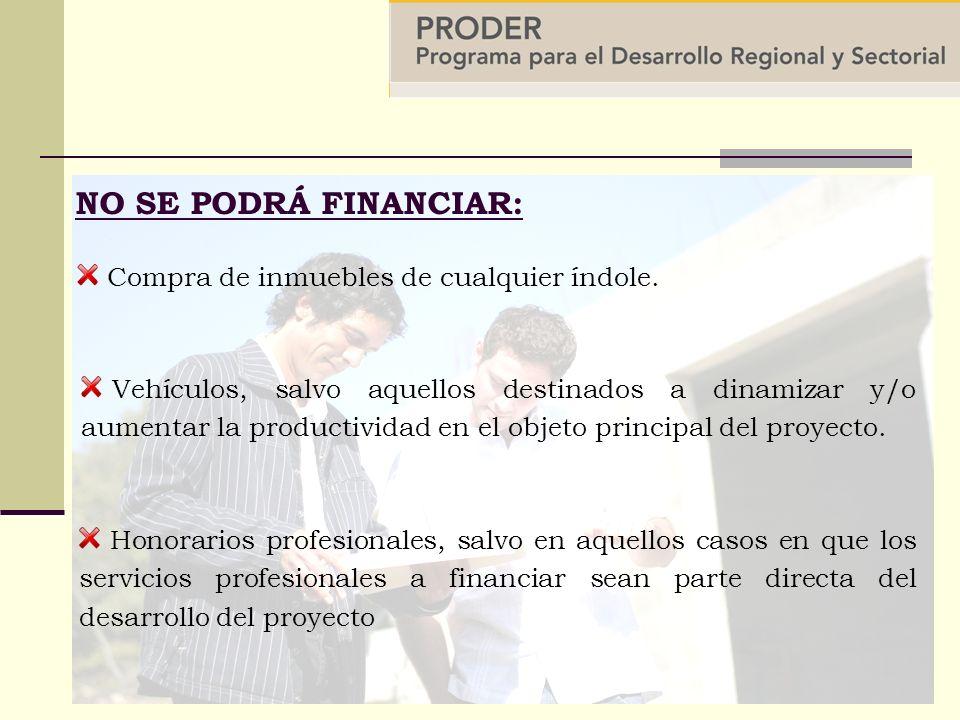 NO SE PODRÁ FINANCIAR: Honorarios profesionales, salvo en aquellos casos en que los servicios profesionales a financiar sean parte directa del desarrollo del proyecto Vehículos, salvo aquellos destinados a dinamizar y/o aumentar la productividad en el objeto principal del proyecto.