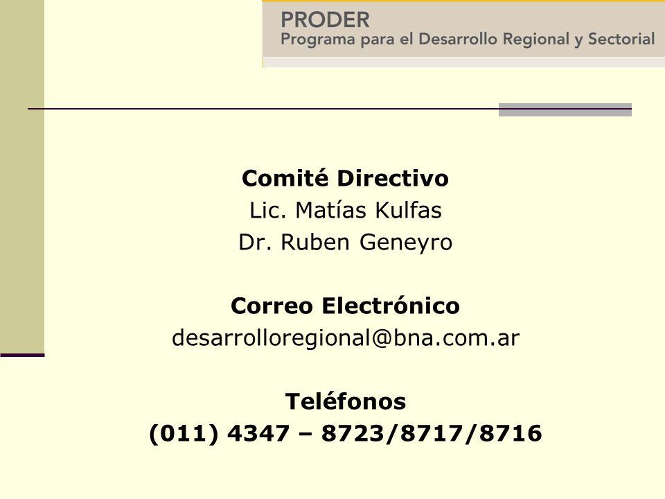 Comité Directivo Lic. Matías Kulfas Dr.