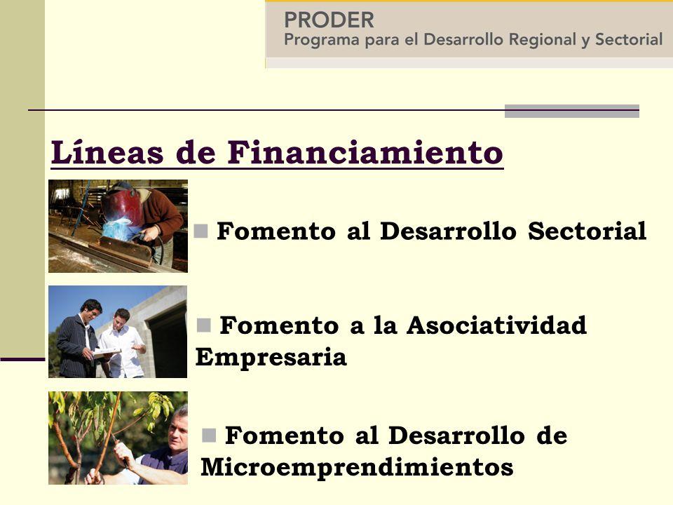 Líneas de Financiamiento Fomento al Desarrollo Sectorial Fomento al Desarrollo de Microemprendimientos Fomento a la Asociatividad Empresaria
