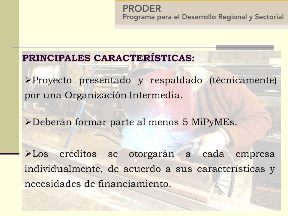 Proyecto presentado y respaldado (técnicamente) por una Organización Intermedia.