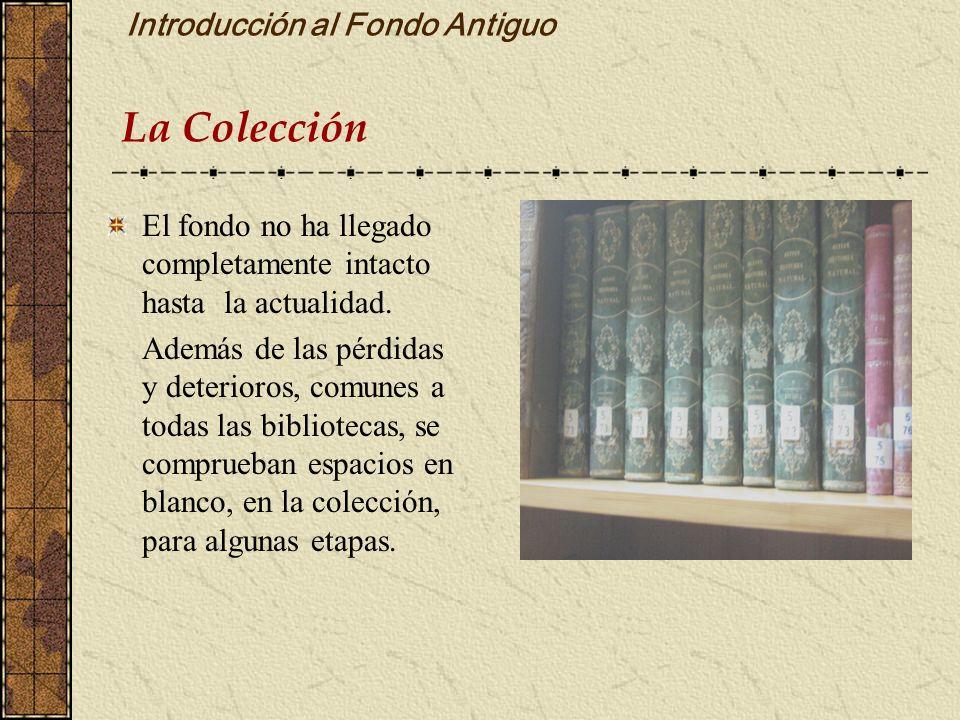 Introducción al Fondo Antiguo La Colección El fondo no ha llegado completamente intacto hasta la actualidad. Además de las pérdidas y deterioros, comu