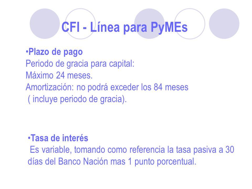 Plazo de pago Periodo de gracia para capital: Máximo 24 meses.