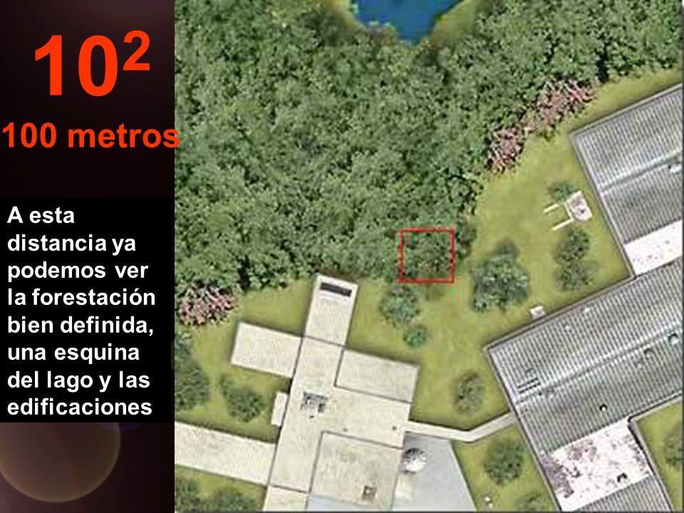 A esta distancia ya podemos ver la forestación bien definida, una esquina del lago y las edificaciones 10 2 100 metros