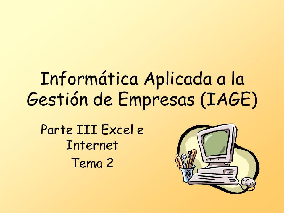 Informática Aplicada a la Gestión de Empresas (IAGE) Parte III Excel e Internet Tema 2