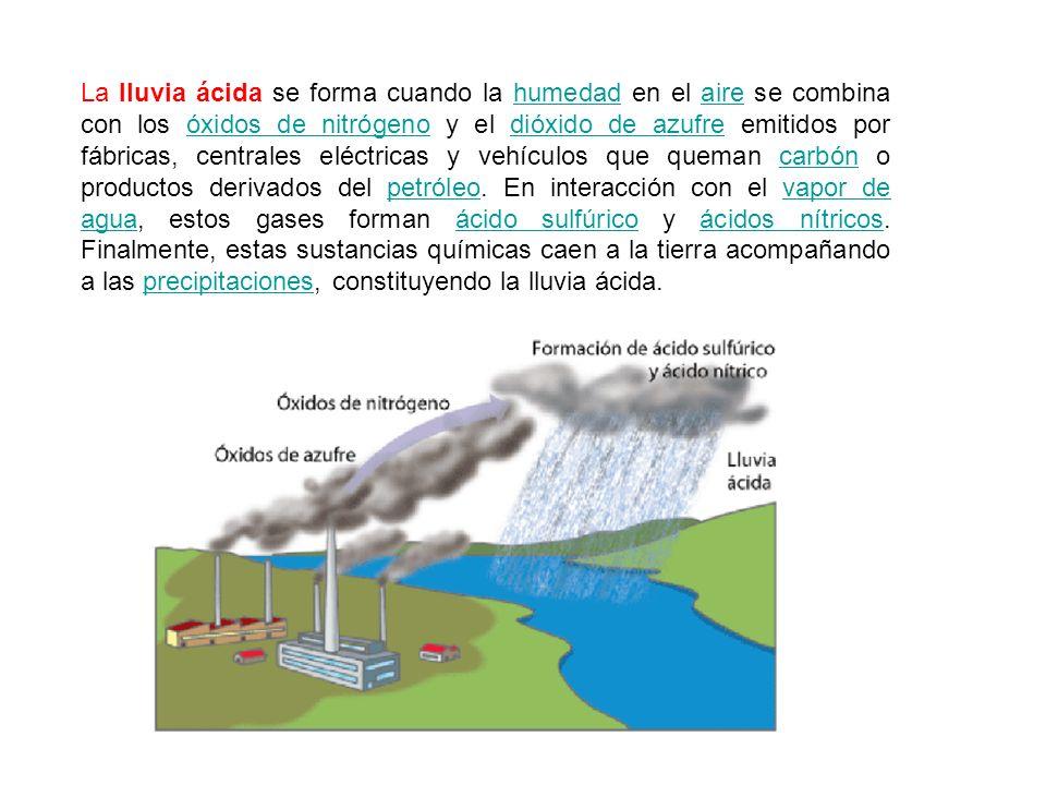 La lluvia ácida se forma cuando la humedad en el aire se combina con los óxidos de nitrógeno y el dióxido de azufre emitidos por fábricas, centrales e