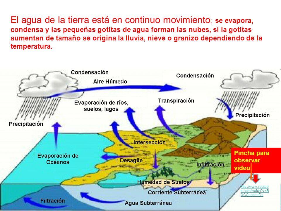 El agua de la tierra está en continuo movimiento ; se evapora, condensa y las pequeñas gotitas de agua forman las nubes, si la gotitas aumentan de tam