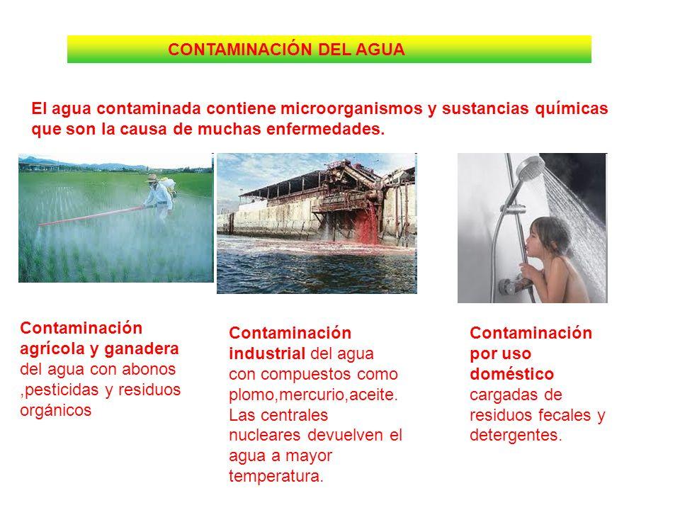 CONTAMINACIÓN DEL AGUA El agua contaminada contiene microorganismos y sustancias químicas que son la causa de muchas enfermedades. Contaminación agríc