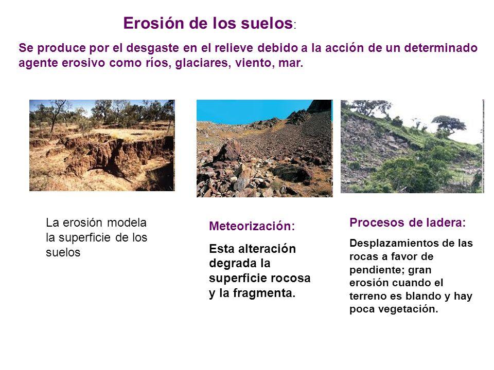 Erosión de los suelos : Se produce por el desgaste en el relieve debido a la acción de un determinado agente erosivo como ríos, glaciares, viento, mar