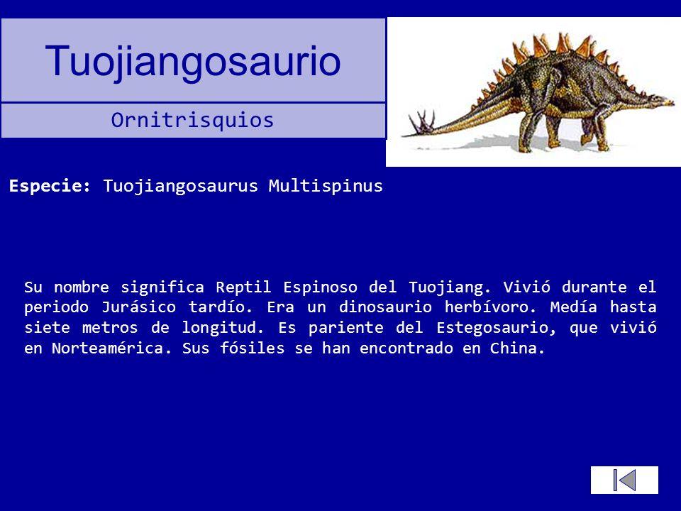 Tuojiangosaurio Su nombre significa Reptil Espinoso del Tuojiang. Vivió durante el periodo Jurásico tardío. Era un dinosaurio herbívoro. Medía hasta s