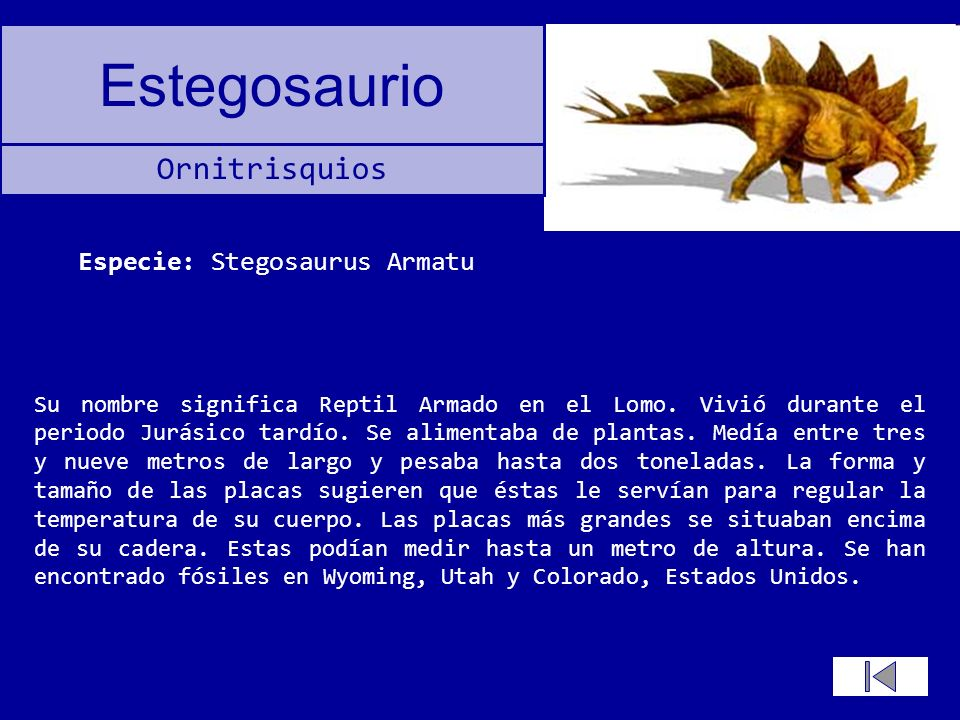 Estegosaurio Su nombre significa Reptil Armado en el Lomo. Vivió durante el periodo Jurásico tardío. Se alimentaba de plantas. Medía entre tres y nuev