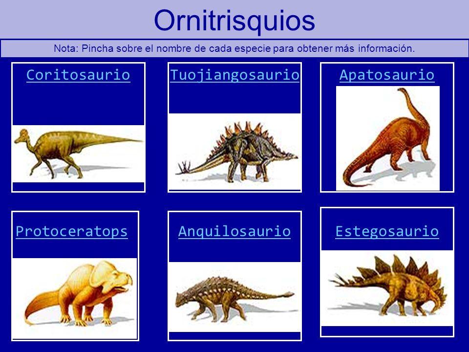 Ornitrisquios CoritosaurioApatosaurioTuojiangosaurio AnquilosaurioEstegosaurioProtoceratops Nota: Pincha sobre el nombre de cada especie para obtener