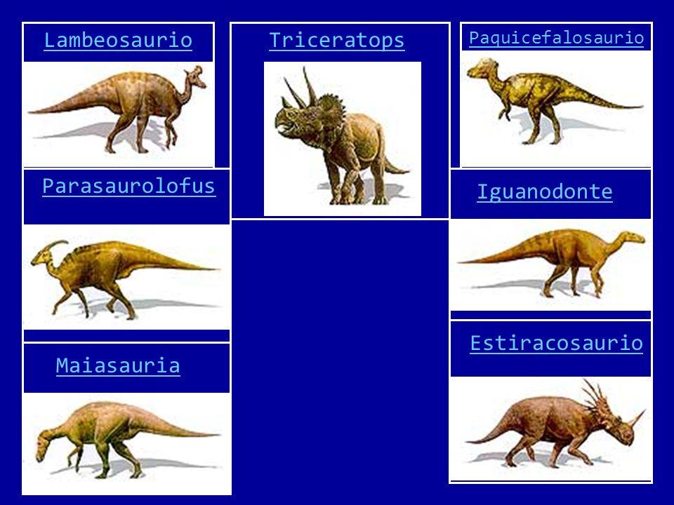 Lambeosaurio Su nombre significa Reptil de Lambe.Vivió durante el periodo Cretácico tardío.