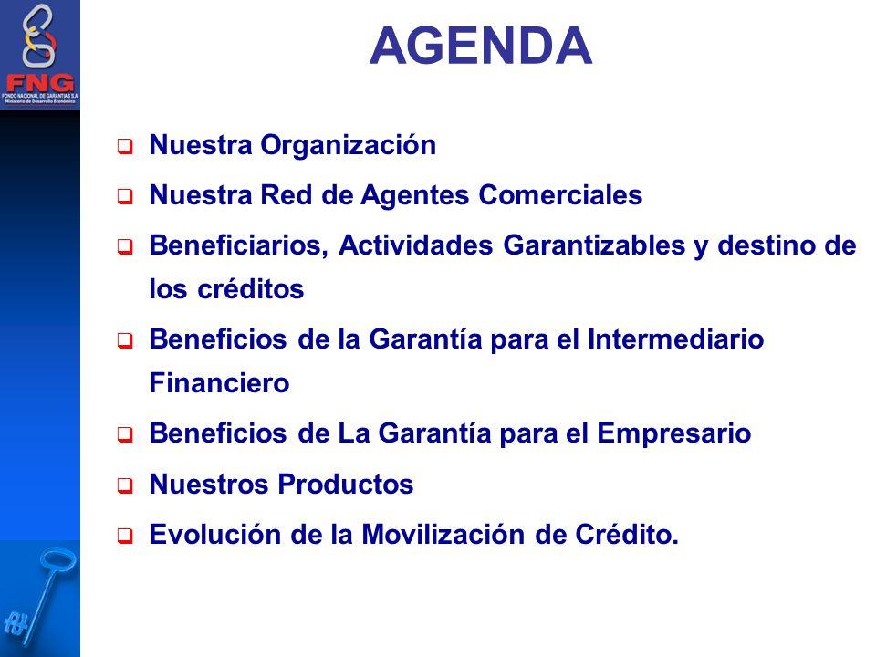 Nuestra Organización Nuestra Red de Agentes Comerciales Beneficiarios, Actividades Garantizables y destino de los créditos Beneficios de la Garantía para el Intermediario Financiero Beneficios de La Garantía para el Empresario Nuestros Productos Evolución de la Movilización de Crédito.