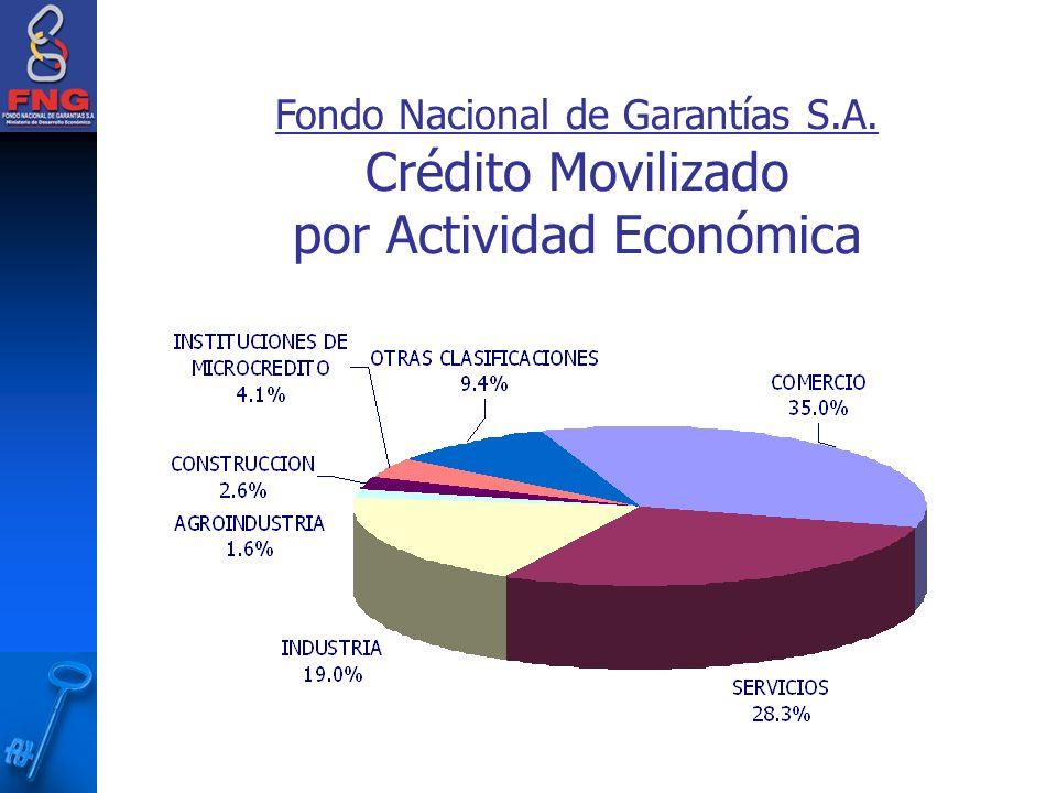 Fondo Nacional de Garantías S.A.
