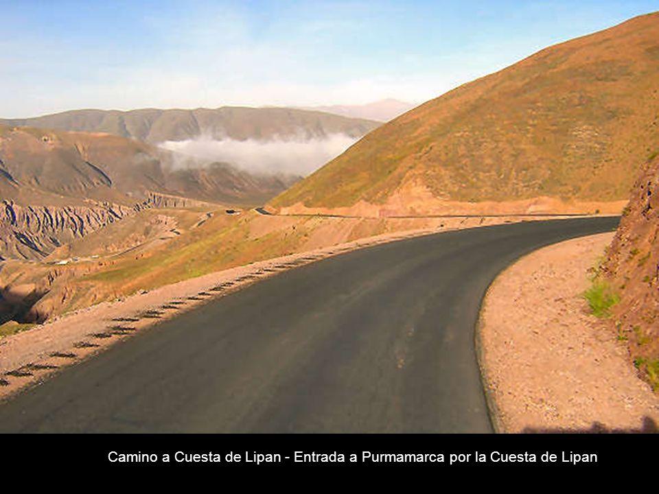 Purmamarca es una localidad del departamento de Tumbaya, en la provincia Argentina de Jujuy. Purmamarca, (en lengua Aimara purma significa desierto y