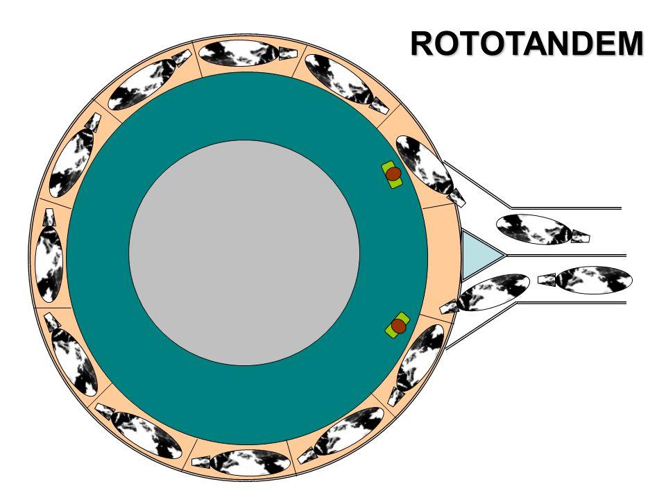 ROTOTANDEM