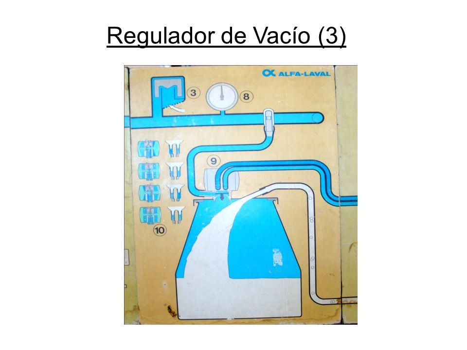 Regulador de Vacío (3)
